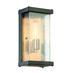 Craftmade Z9902-31 Farnsworth 1 Light Small Wall Mount in Midnight/Patina Aged Brass with Clear Seeded Glass